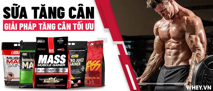 sua-tang-can-mass-gainer-cho-nguoi-gay-tap-gym-tren-18-tuoi-whey-vn