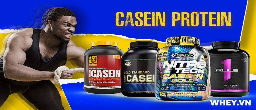 Casein Protein là nguồn protein thiết yếu bổ sung ban đêm hỗ trợ chống dị hóa cơ bắp. Casein Protein chính hãng, uy tín, giá rẻ tại Hà Nội TpHCM